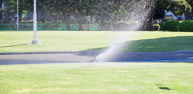 Image of sprinkler watering a golf course